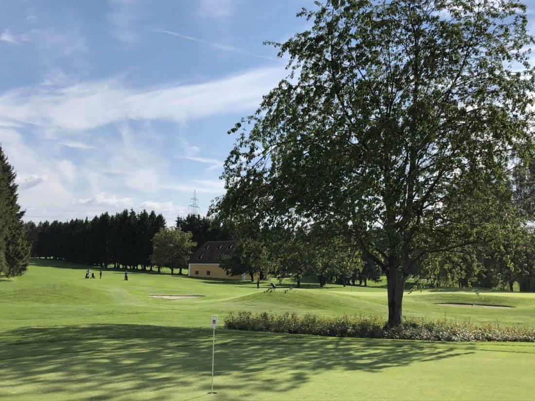 Golfliebling im GC Linz-St. Florian